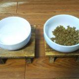 猫用食器を準備!陶器がいい?食べやすい高さは何センチ?