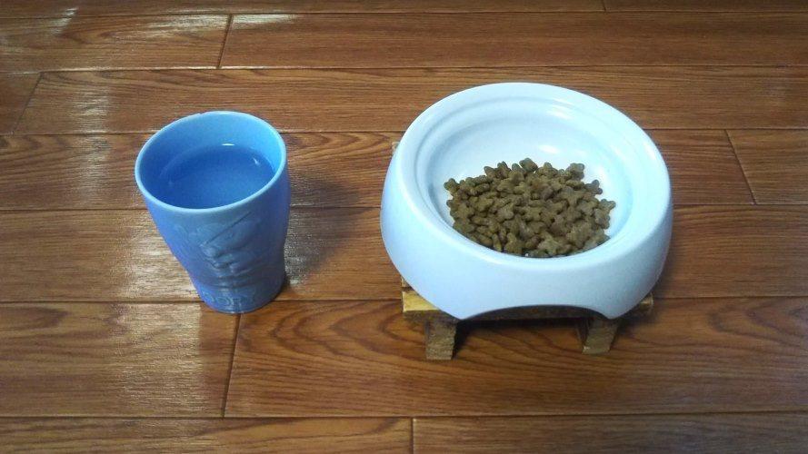 猫用食器と水入れ