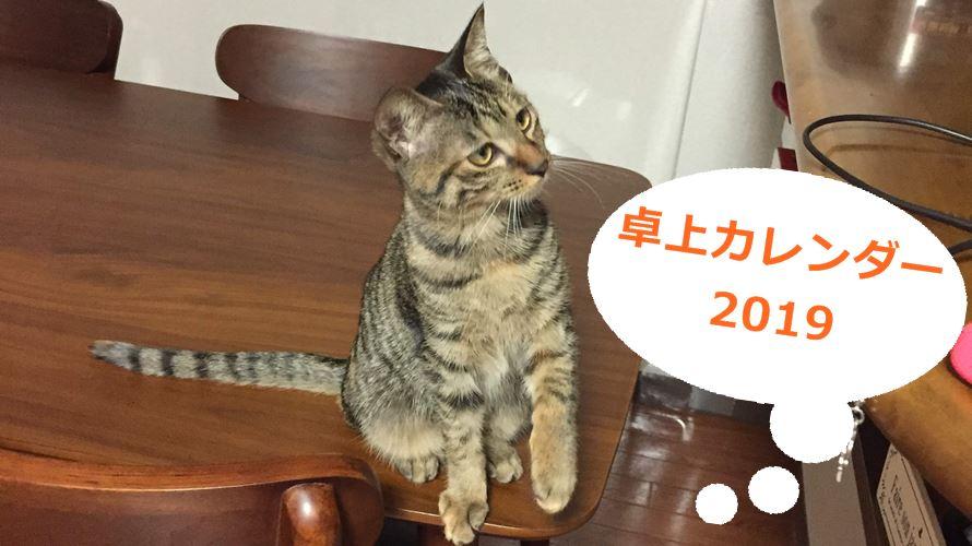 猫カレンダー卓上