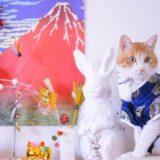 【2019】猫のお正月おせち・ご馳走ご飯・おせち風おやつ特集♪