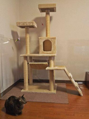据え置き型キャットタワー150cm