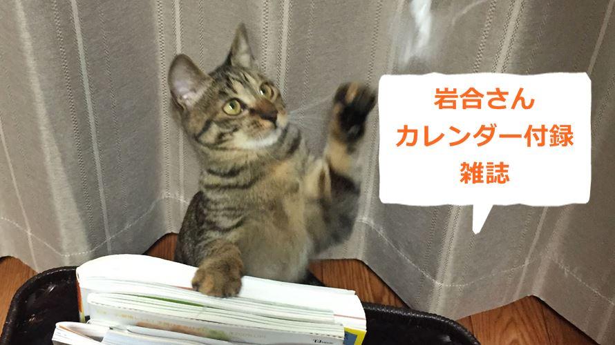 付録で岩合さん猫カレンダー2019がついてくる雑誌2冊!撮り下ろしも