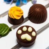 2019バレンタイン猫モチーフのチョコレートとパッケージがいいね特集