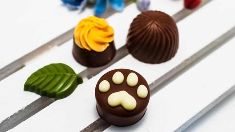 猫の肉球チョコレート